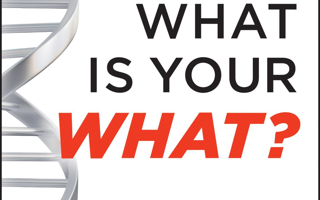 Your Free Copy of What Is Your WHAT? Discover The